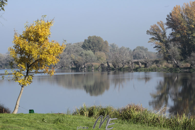landscape_still life_Tisza
